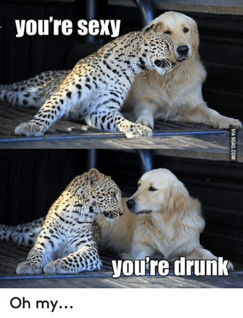 Youre Sexy: you're sexy  you're drunk Oh my...