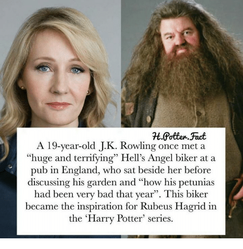 """Harry Potter (Series): A 19-year-old J.K. Rowling once met a  """"huge and terrifying"""" Hell's Angel biker at a  pub in England, who sat beside her before  discussing his garden and """"how his petunias  had been very bad that year"""". This biker  became the inspiration for Rubeus Hagrid in  the 'Harry Potter series."""
