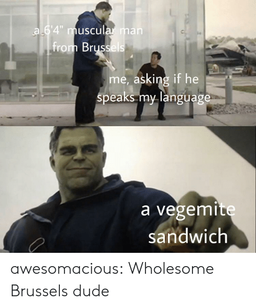 """Dude, Tumblr, and Blog: a 64"""" muscular man  from Brussels  me, asking if he  speaks my language  a vegemite  sandwich awesomacious:  Wholesome Brussels dude"""
