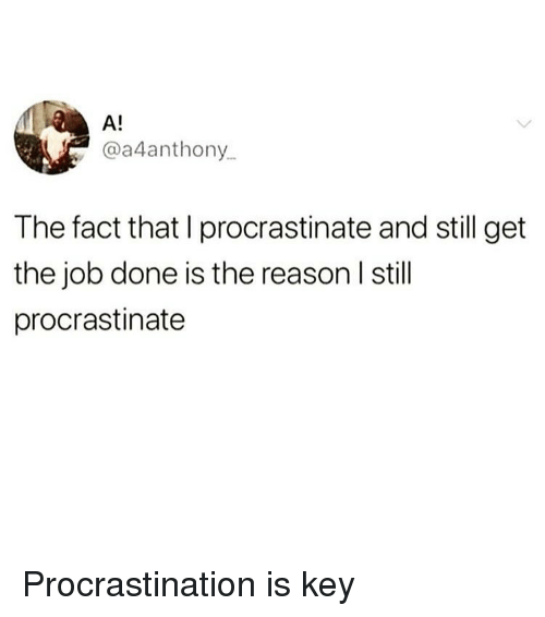 Funny, Girl Memes, and Procrastination: A!  @a4anthony  The fact that I procrastinate and still get  the job done is the reason I still  procrastinate Procrastination is key