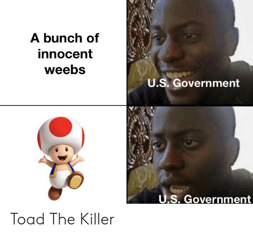 Government, Toad, and Killer: A bunch of  innocent  weebs  U.S. Government  U.S. Government Toad The Killer
