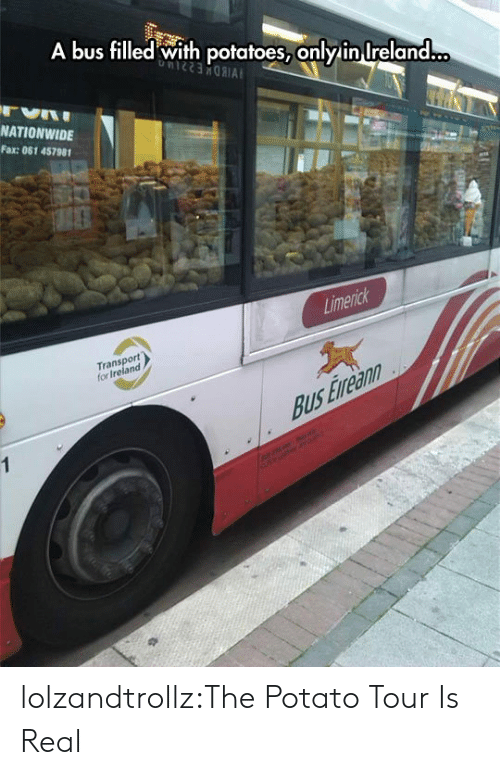 Nationwide, Tumblr, and Blog: A bus filled with potatoes, only in Ireland...  NATIONWIDE  Fax: 061 457981  Limerick  Transport  for Ireland  Bus Eveann  1  erc lolzandtrollz:The Potato Tour Is Real