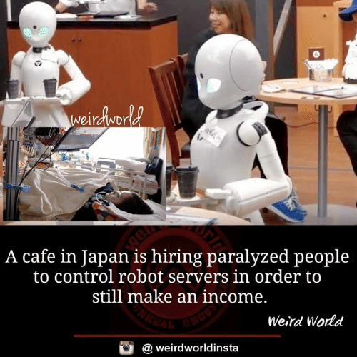 Memes, Weird, and Control: A cafe in Japan is hiring paralyzed people  to control robot servers in order to  still make an income,  Weird World  @ weirdworldinsta