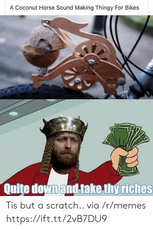 Memes, Horse, and Quite: A Coconut Horse Sound Making Thingy For Bikes  Quite downand take thy riches Tis but a scratch.. via /r/memes https://ift.tt/2vB7DU9