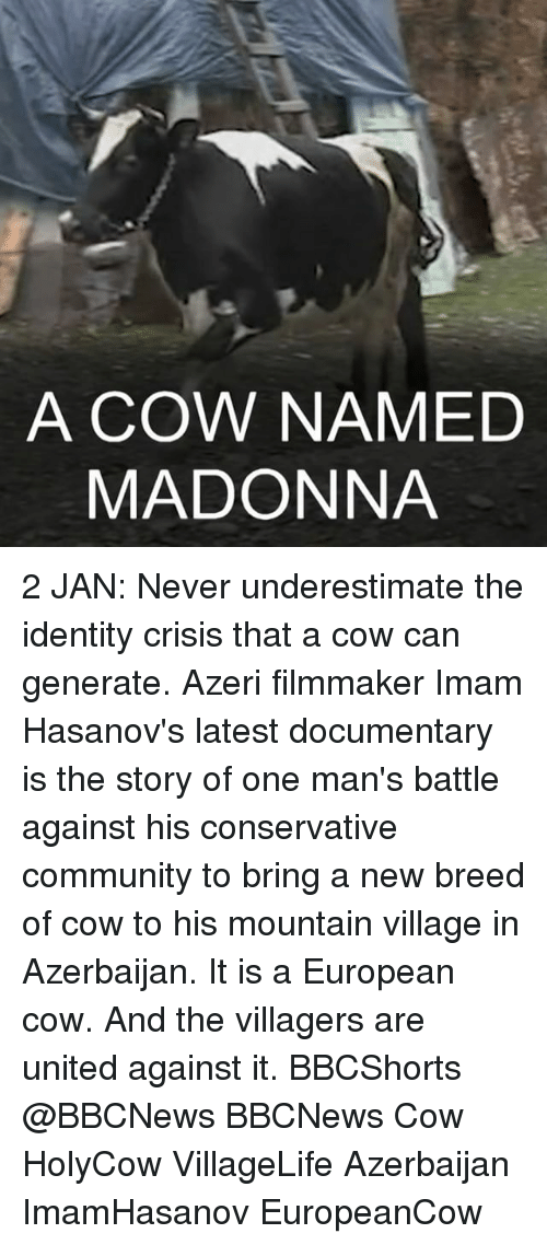 The Villager: A COW NAMED  MADONNA 2 JAN: Never underestimate the identity crisis that a cow can generate. Azeri filmmaker Imam Hasanov's latest documentary is the story of one man's battle against his conservative community to bring a new breed of cow to his mountain village in Azerbaijan. It is a European cow. And the villagers are united against it. BBCShorts @BBCNews BBCNews Cow HolyCow VillageLife Azerbaijan ImamHasanov EuropeanCow