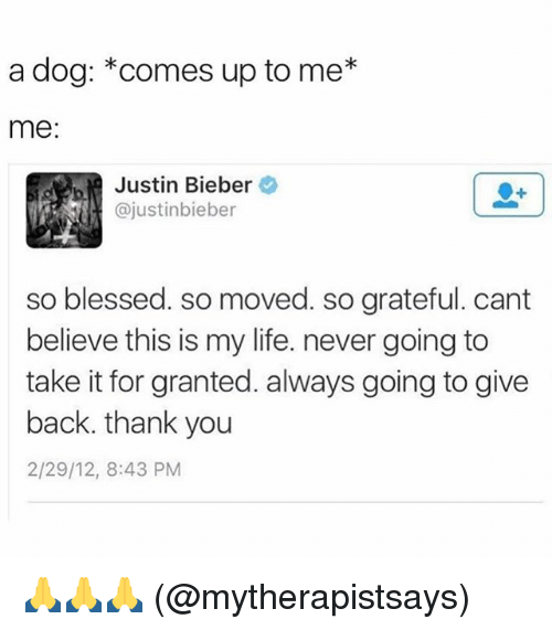 Blessed, Justin Bieber, and Life: a dog: *comes up to me*  me  Justin Bieber  @justinbieber  so blessed. so moved. so grateful. cant  believe this is my life. never going to  take it for granted. always going to give  back. thank you  2/29/12, 8:43 PM  SO 🙏🙏🙏 (@mytherapistsays)