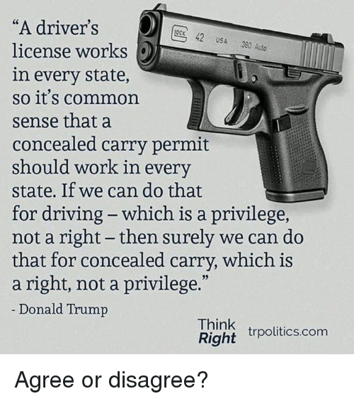 """Donald Trump, Driving, and Memes: """"A driver's  license works  in every state,  so it's common  sense that a  concealed carry permit  should work in every  state. If we can do that  for driving - which is a privilege,  not a right - then surely we can do  that for concealed carry, which is  a right, not a privilege.""""  Donald Trump  OcK 42 USA 380 Auto  Think  Right rpolitics.com Agree or disagree?"""
