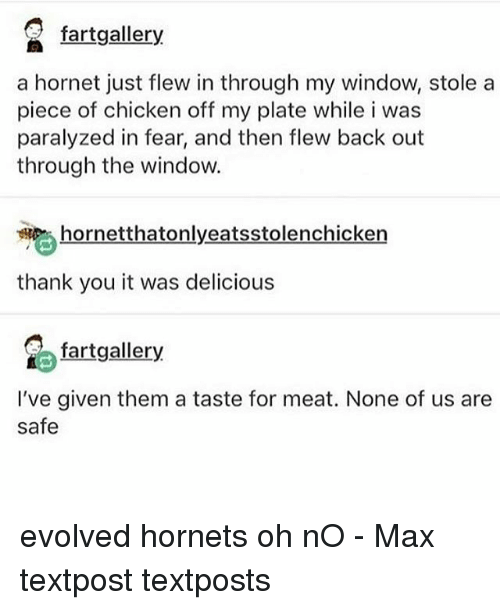 Memes, Thank You, and Chicken: a fartgallery  a hornet just flew in through my window, stole a  piece of chicken off my plate while i was  paralyzed in fear, and then flew back out  through the window.  hornetthatonlyeatsstolenchicken  thank you it was delicious  fartgallery  I've given them a taste for meat. None of us are  safe evolved hornets oh nO - Max textpost textposts