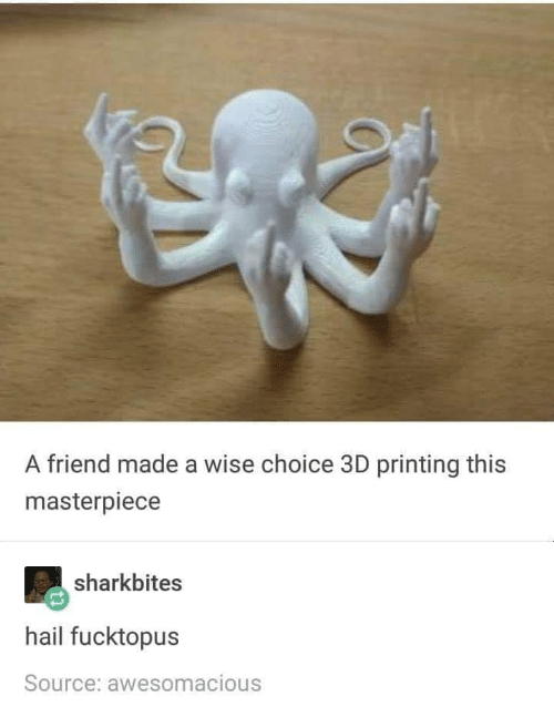 3d Printing, Source, and Friend: A friend made a wise choice 3D printing this  masterpiece  sharkbites  hail fucktopus  Source: awesomacious