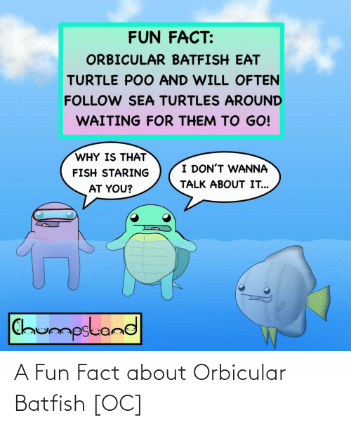 fact: A Fun Fact about Orbicular Batfish [OC]