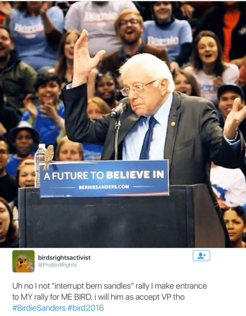 """Bern: A FUTURE TO BELIEVE IN  BERNIESANDERS.COM   birdsrightsactivist  @ProBirdRights  Uh nolnot """"interrupt bern sandles"""" rally I make entrance  to MY rally for ME BIRD i will him as accept VP tho"""