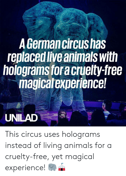 Animals, Dank, and Free: A Germancircushas  replaced live animals with  holograms for a cruelty-free  magicalexperience!  UNILAD This circus uses holograms instead of living animals for a cruelty-free, yet magical experience! 🐘🎪