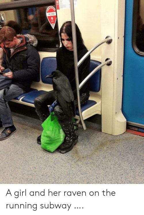 Raven: A girl and her raven on the running subway ….
