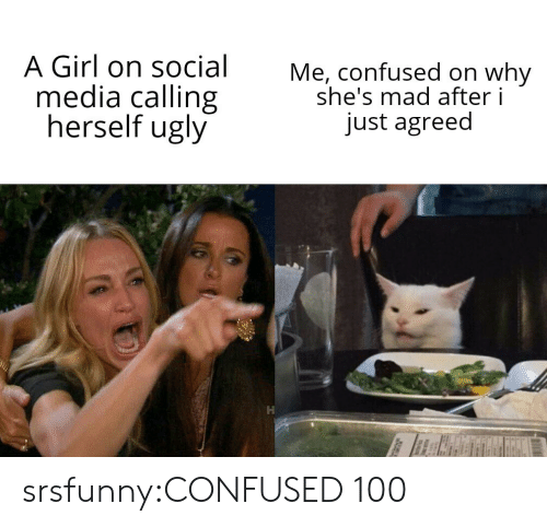 Confused, Social Media, and Tumblr: A Girl on social  media calling  herself ugly  Me, confused on why  she's mad after i  just agreed srsfunny:CONFUSED 100