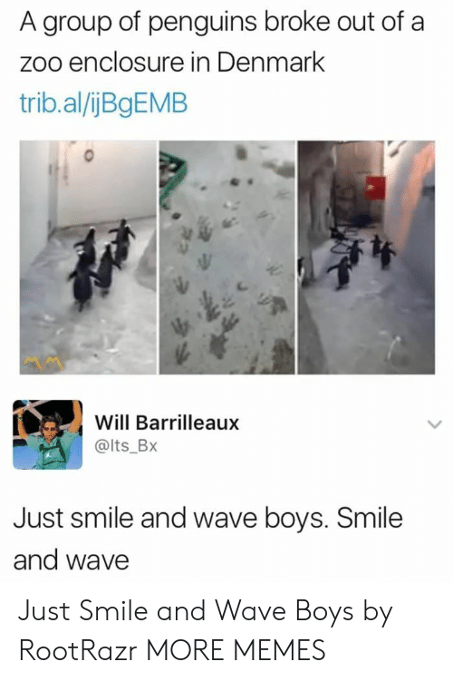 Dank, Memes, and Target: A group of penguins broke out of a  zoo enclosure in Denmark  trib.al/jBgEMB  Will Barrilleaux  @lts_BX  Just smile and wave boys. Smile  and wave Just Smile and Wave Boys by RootRazr MORE MEMES