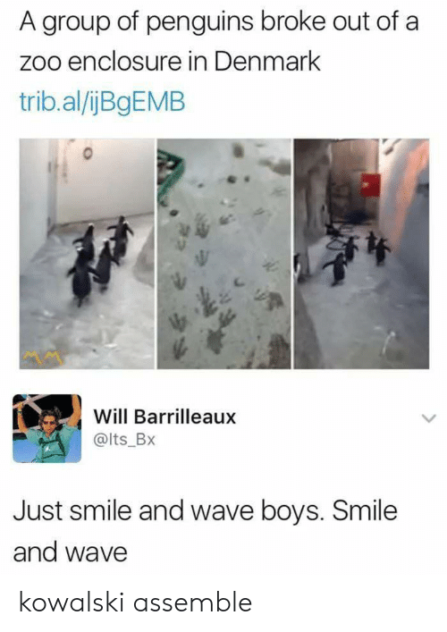 Denmark: A group of penguins broke out of a  zoo enclosure in Denmark  trib.al/ijBgEMB  Will Barrilleaux  @lts_BX  Just smile and wave boys. Smile  and wave kowalski assemble
