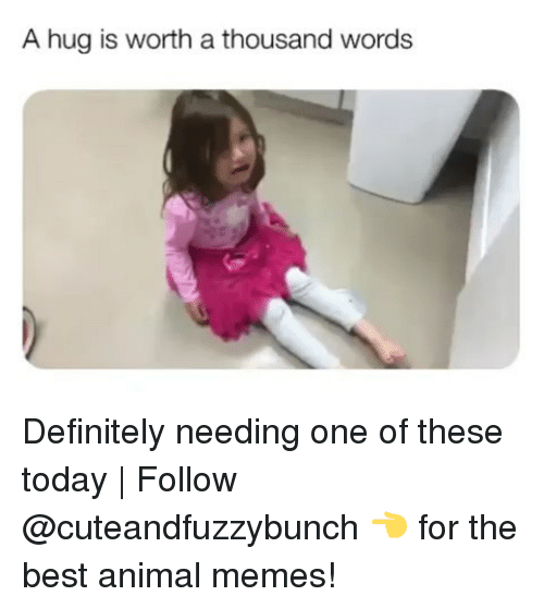 Definitely, Memes, and Animal: A hug is worth a thousand words Definitely needing one of these today | Follow @cuteandfuzzybunch 👈 for the best animal memes!