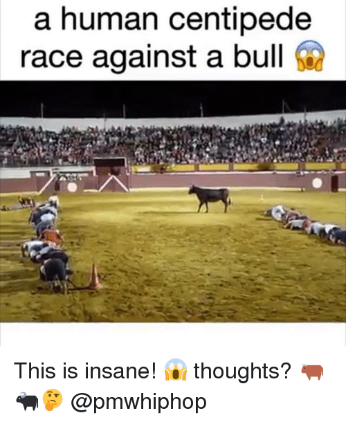 centipede: a human centipede  race against a bull This is insane! 😱 thoughts? 🐂🐃🤔 @pmwhiphop