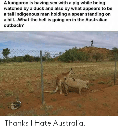 indigenous: A kangaroo is having sex with a pig while being  watched by a duck and also by what appears to be  a tall indigenous man holding a spear standing on  a hill...What the hell is going on in the Australian  outback? Thanks I Hate Australia.