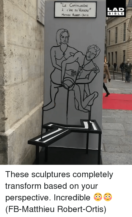 Memes, Bible, and 🤖: A L'ERE DU VERSEAU  MATTHIEU ROBERT-ORTIS  LAD  BIBLE These sculptures completely transform based on your perspective. Incredible 😳😳 (FB-Matthieu Robert-Ortis)
