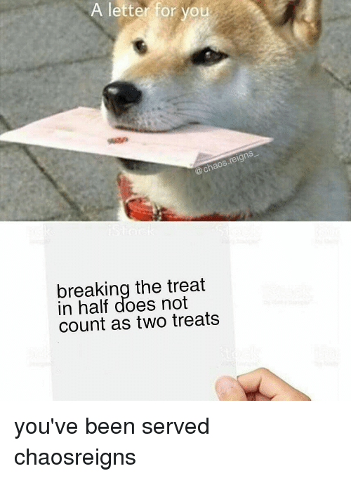 Memes, Been, and 🤖: A letter for you  @chaos.reigns  breaking the treat  in half does not  count as two treats you've been served chaosreigns