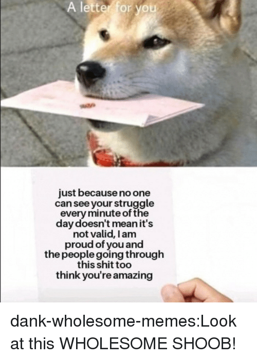 i am proud: A  letter  for you  just because no one  can see your struggle  every minute of the  day doesn't mean it's  not valid, I am  proud of you and  the people going through  this shit too  think you're amazing dank-wholesome-memes:Look at this WHOLESOME SHOOB!