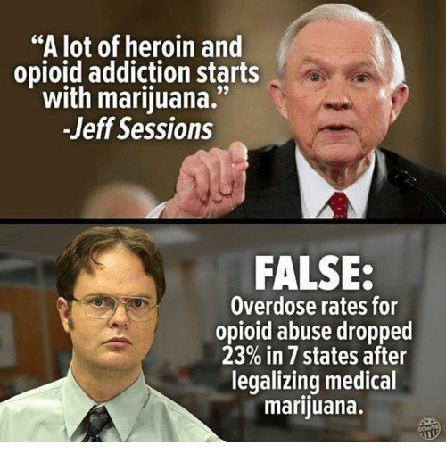 "Heroin, Memes, and Marijuana: ""A lot of heroin and  opioid addiction starts  with marijuana.""  -Jeff Sessions  FALSE:  Overdose rates for  opioid abuse dropped  23% in 7 states after  legalizing medical  marijuana."