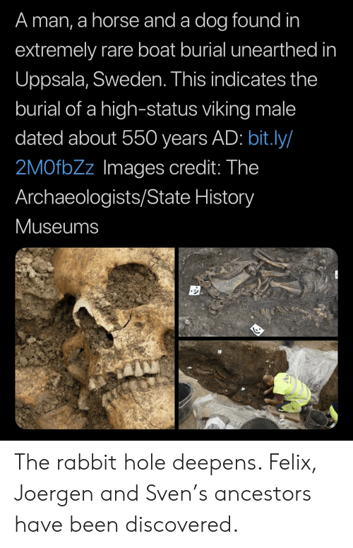 History, Horse, and Images: A man, a horse and a dog found in  extremely rare boat burial unearthed in  Uppsala, Sweden. This indicates the  burial of a high-status viking male  dated about 550 years AD: bit.ly/  2MOfbZz Images credit: The  Archaeologists/State History  Museums The rabbit hole deepens. Felix, Joergen and Sven's ancestors have been discovered.