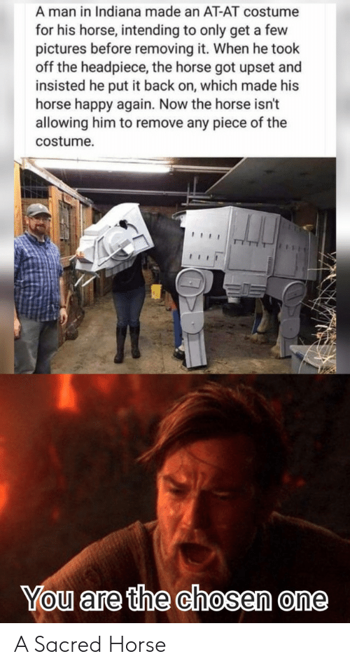 Indiana: A man in Indiana made an AT-AT costume  for his horse, intending to only get a few  pictures before removing it. When he took  off the headpiece, the horse got upset and  insisted he put it back on, which made his  horse happy again. Now the horse isn't  allowing him to remove any piece of the  costume  You are the chosen one A Sacred Horse