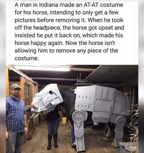 Removing: A man in Indiana made an AT-AT costume  for his horse, intending to only get a few  pictures before removing it. When he took  off the headpiece, the horse got upset and  insisted he put it back on, which made his  horse happy again. Now the horse isn't  allowing him to remove any piece of the  costume.