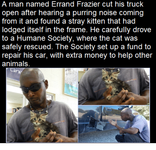 frazier: A man named Errand Frazier cut his truck  open after hearing a purring noise coming  from it and found a stray kitten that had  lodged itself in the frame. He carefully drove  to a Humane Society, where the cat was  safely rescued. The Society set up a fund to  repair his car, with extra money to help other  animals