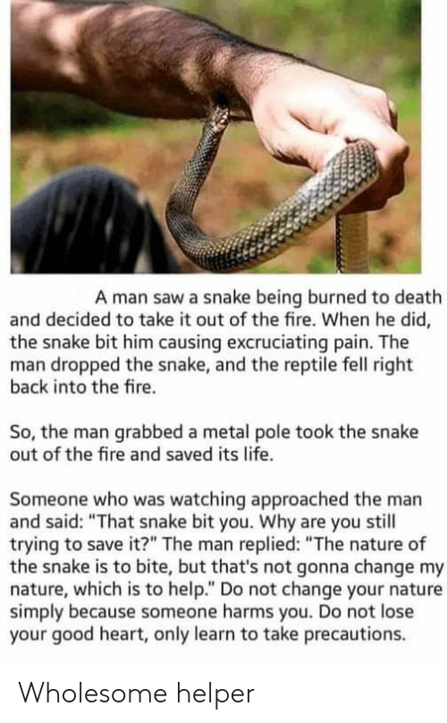 """Fire, Life, and Saw: A man saw a snake being burned to death  and decided to take it out of the fire. When he did,  the snake bit him causing excruciating pain. The  man dropped the snake, and the reptile fell right  back into the fire.  So, the man grabbed a metal pole took the snake  out of the fire and saved its life.  Someone who was watching approached the man  and said: """"That snake bit you. Why are you still  trying to save it?"""" The man replied: """"The nature of  the snake is to bite, but that's not gonna change my  nature, which is to help."""" Do not change your nature  simply because someone harms you. Do not lose  your good heart, only learn to take precautions. Wholesome helper"""