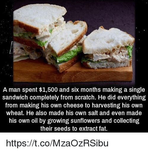 Memes, Scratch, and Fat: A man spent $1,500 and six months making a single  sandwich completely from scratch. He did everything  from making his own cheese to harvesting his own  wheat. He also made his own salt and even made  his own oil by growing sunflowers and collecting  their seeds to extract fat. https://t.co/MzaOzRSibu