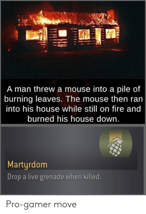 Fire, House, and Live: A man threw a mouse into a pile of  burning leaves. The mouse then ran  into his house while still on fire and  burned his house down.  Martyrdom  Drop a live grenade when killed. Pro-gamer move
