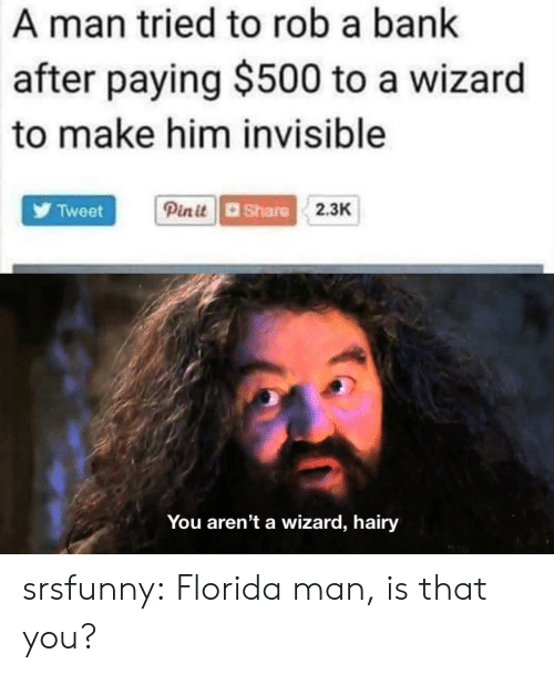 Florida Man, Tumblr, and Bank: A man tried to rob a bank  after paying $500 to a wizard  to make him invisible  Tweet  dShare  2.3K  You aren't a wizard, hairy srsfunny:  Florida man, is that you?