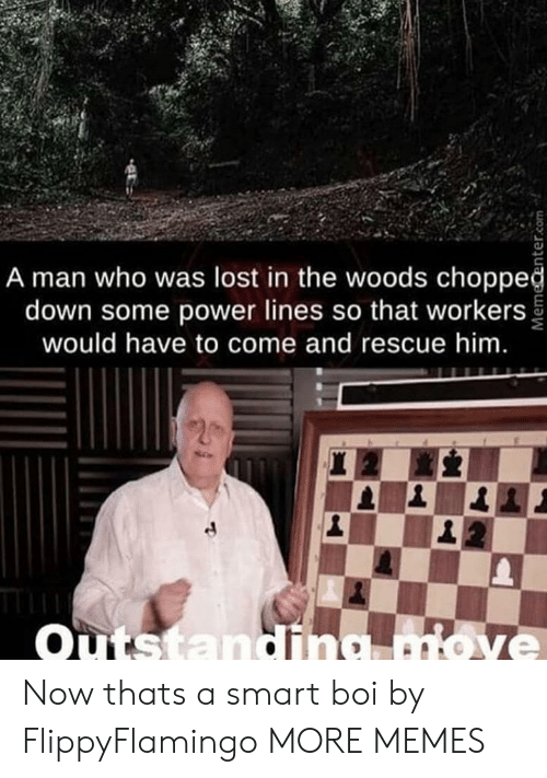 Dank, Memes, and Target: A man who was lost in the woods choppeğ  down some power lines so that workers  would have to come and rescue him.  Outstandina move Now thats a smart boi by FlippyFlamingo MORE MEMES