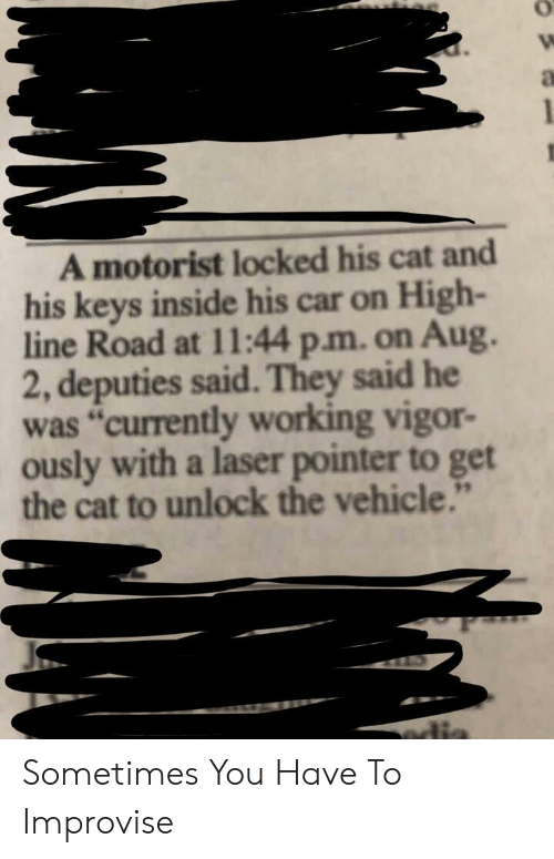"""Cat, Car, and Working: A motorist locked his cat and  his keys inside his car on High-  line Road at 11l:44 p.m. on Aug.  2, deputies said.They said he  was """"currently working vigor-  ously with a laser pointer to get  the cat to unlock the vehicle.""""  edis Sometimes You Have To Improvise"""