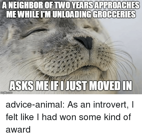 Advice, Introvert, and Tumblr: A NEIGHBOR OFTWO YEARSAPPROACHES  MEWHILE IMUNLOA  ADING GROCCERIES  ASKS ME IFIJUST MOVED  IN advice-animal:  As an introvert, I felt like I had won some kind of award