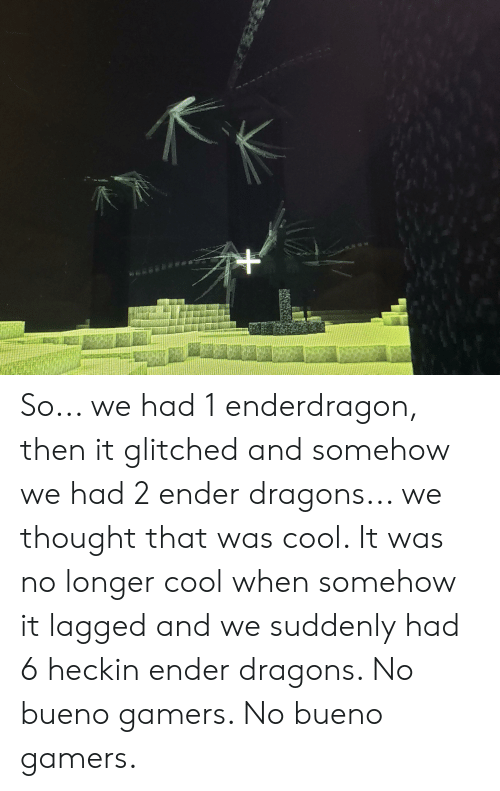 Cool, Dragons, and Thought: a o So... we had 1 enderdragon, then it glitched and somehow we had 2 ender dragons... we thought that was cool. It was no longer cool when somehow it lagged and we suddenly had 6 heckin ender dragons. No bueno gamers. No bueno gamers.