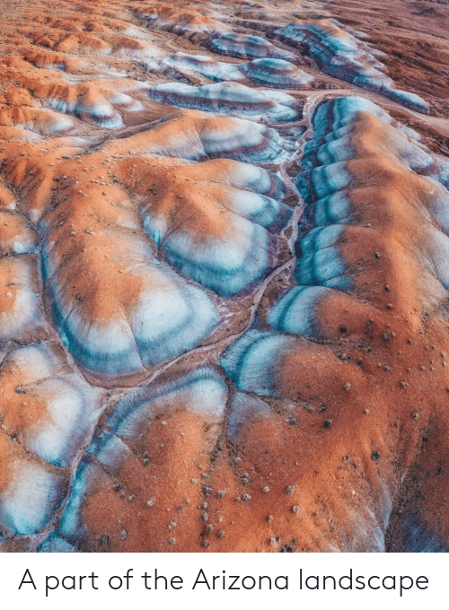 Arizona, The, and Part: A part of the Arizona landscape