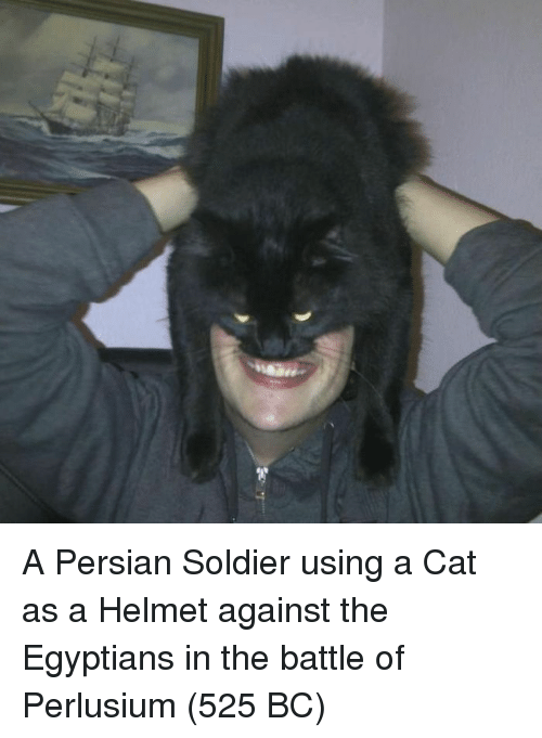 Persian: A Persian Soldier using a Cat as a Helmet against the Egyptians in the battle of Perlusium (525 BC)