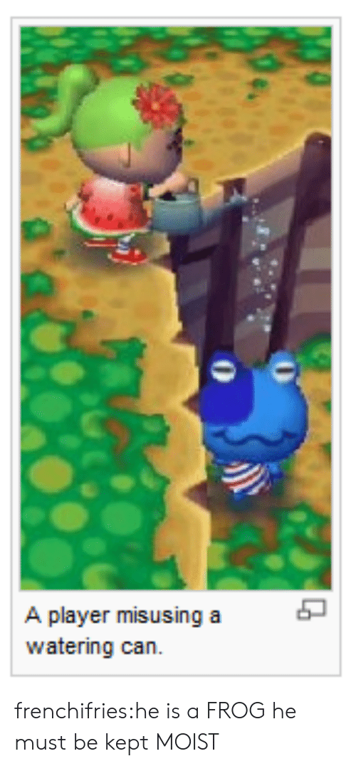 frog: A player misusing a  watering can frenchifries:he is a FROG he must be kept MOIST