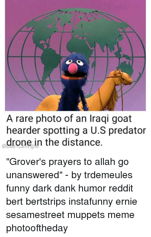 "Dank, Drone, and Funny: A rare photo of an Iraqi goat  hearder spotting a U.S predator  drone in the distance. ""Grover's prayers to allah go unanswered"" - by trdemeules funny dark dank humor reddit bert bertstrips instafunny ernie sesamestreet muppets meme photooftheday"