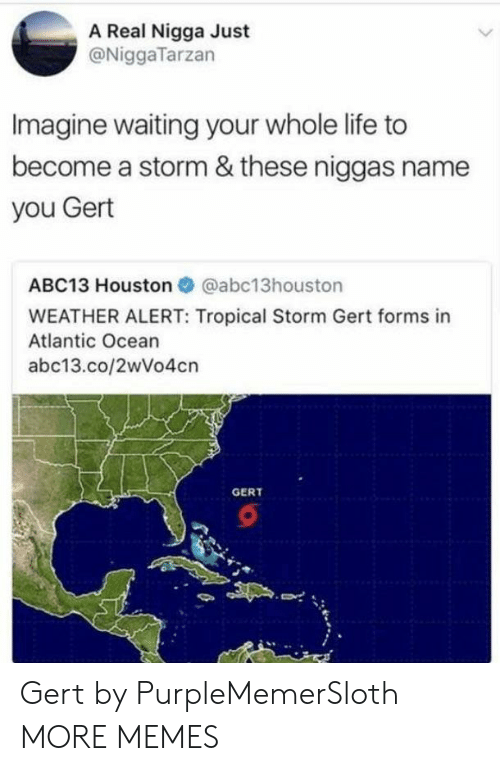 Dank, Life, and Memes: A Real Nigga Just  @NiggaTarzan  Imagine waiting your whole life to  become a storm & these niggas name  you Gert  ABC13 Houston @abc13houston  WEATHER ALERT: Tropical Storm Gert forms in  Atlantic Ocean  abc13.co/2wVo4cn  GERT Gert by PurpleMemerSloth MORE MEMES