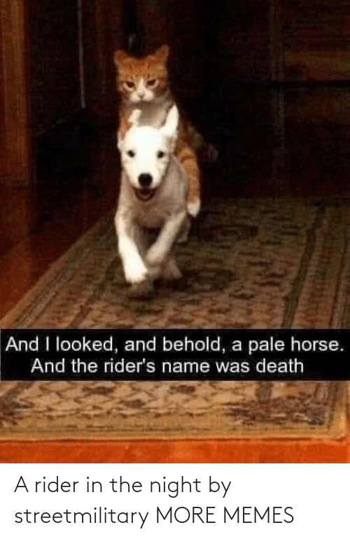 night: A rider in the night by streetmilitary MORE MEMES