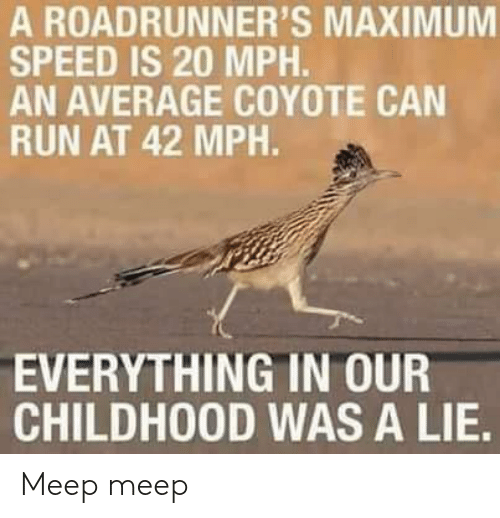 Coyote: A ROADRUNNER'S MAXIMUM  SPEED IS 20 MPH.  AN AVERAGE COYOTE CAN  RUN AT 42 MPH.  EVERYTHING IN OUR  CHILDHOOD WAS A LIE. Meep meep
