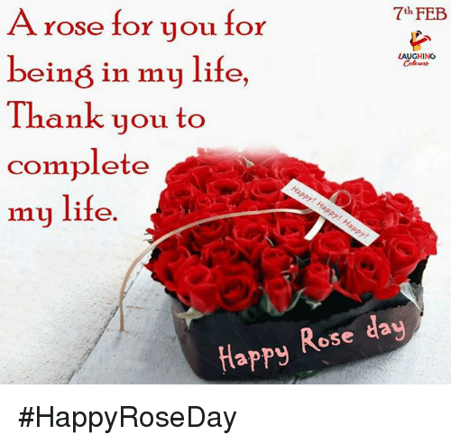 Life, Thank You, and Happy: A rose for you for  being in my life  Thank you to  complete  my life  7h FEB  LAUGHING  Happy Rose day #HappyRoseDay