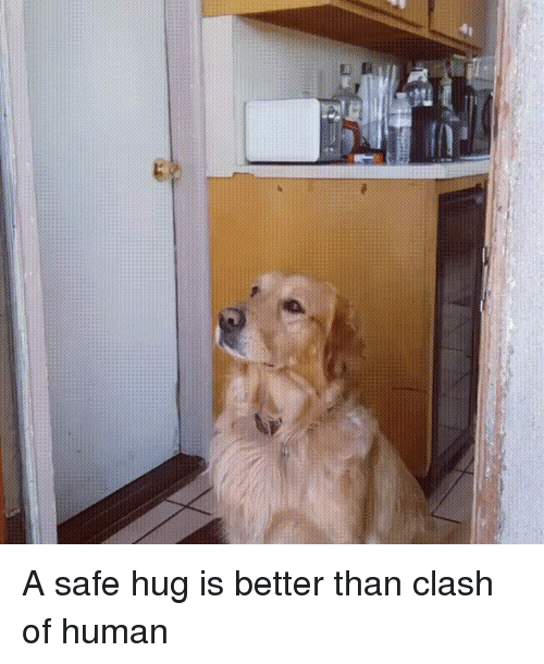 Clash, Human, and Safe: A safe hug is better than clash of human