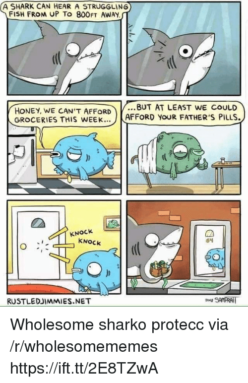 Shark, Fish, and Wholesome: A SHARK CAN HEAR A STRUGGLING  FISH FROM UP To 800FT AWAY  HONEY, WE CAN'T AFFORDBUT AT LEAST WE COULD  GROCERIES THIS WEEK... J  AFFORD YOUR FATHER'S PILLS.  KNOCk  KNOCk  RUSTLEDJIMMIES.NET Wholesome sharko protecc via /r/wholesomememes https://ift.tt/2E8TZwA