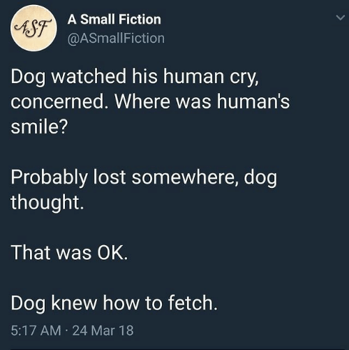 Lost, How To, and Smile: A Small Fiction  AST  @ASmallFiction  Dog watched his human cry,  concerned. Where was human's  smile?  Probably lost somewhere, dog  thought.  That was OK.  Dog knew how to fetch.  5:17 AM  24 Mar 18  >